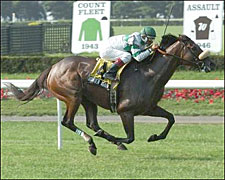 Wonder Again Rolls to Victory in New York Handicap