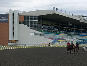 Woodbine's 2013 Season to Begin April 20