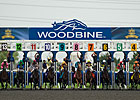 Woodbine Schedules 102 Stakes for 2015 Meet