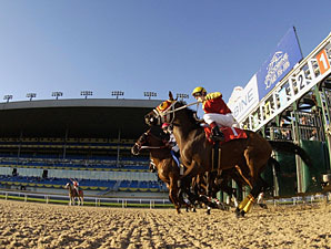Woodbine Cancels Thursday Card