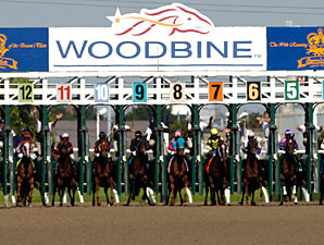 Woodbine Seeks to Cut 11 Racing Days