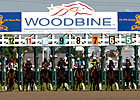 Woodbine Realizes Handle Decline