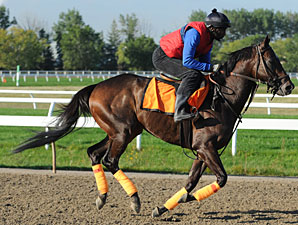 Woodbourne at Woodbine on September 13, 2010.