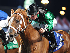 Work All Week wins the 2014 Iowa Sprint Handicap.