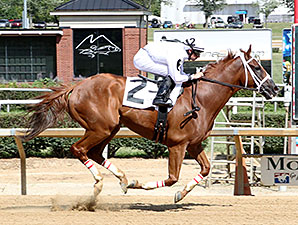 Work All Week wins the 2015 Senator Robert C. Byrd Memorial.