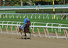 NYRA Tracks to Establish Workout Requirements