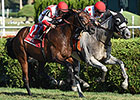 World Approval Rides Hedge to Win Saranac