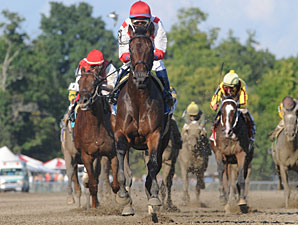 Worstcasescenario wins the 2009 Adirondack.