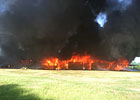 19 Horses Die in Louisiana Barn Fire