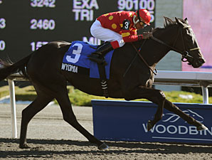 Wyomia Runs Away With Mazarine Stakes
