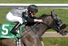 Xchanger Back in Form for Tesio Romp