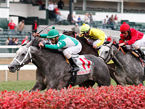 Yankee Fourtune Makes it 5 Straight on Turf