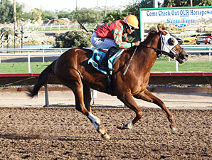 Youbestshewon wins the 2012 ATBA Fall Sales Stakes - Fillies Division.