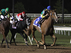 Yvete Sangalo wins the 2011 E. L. Gaylord Memorial Stakes.