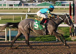 Z Fortune Seeks Redemption in Arkansas