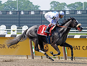 Zaftig Zooms, 'Blessing' Second in Acorn