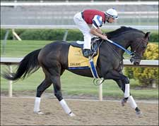 Curlin, Zanjero Work for Asmussen as Derby Week Kicks Off