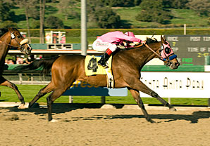 Longshot Zappa cruises to victory in the San Pasqual Handicap.