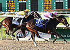 Zardana, Upset Rachel Alexandra, Retired 