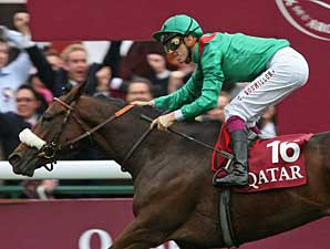 Zarkava Named Cartier Horse of the Year