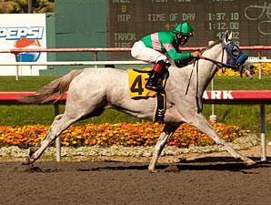Zazu wins the 2011 Hollywood Oaks.