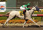 Zazu Takes Rail to Brave Hollywood Oaks Win