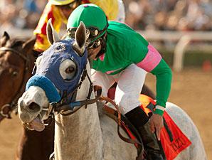 Zazu wins the 2011 Las Virgenes Stakes.