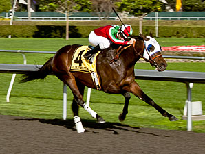 California Derby: Zeewat Looks Tough to Beat