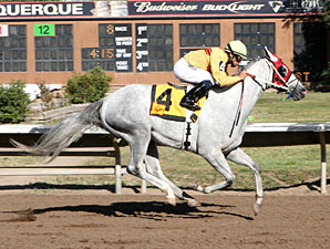 Zenon's Star wins the 2012 New Mexico State Fair Thoroughbred Breeders Stakes..