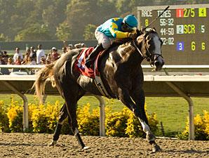Zensational wins the 2009 Triple Bend.
