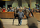 Zenyatta&#39;s Keeneland Appearance