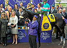 Sire and Pedigree Notes - Breeders&#39; Cup 2009