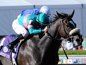 Mr. P Sire Line Rules at Breeders' Cup