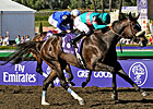 Zenyatta BC Win Voted Moment of the Year