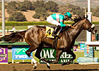 Oak Tree at Santa Anita Meet Set to Begin