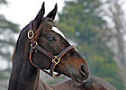 Zenyatta Receives William H. May Award