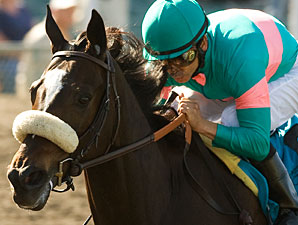 Zenyatta Turns in Sharp Work at Hollywood