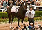 Slideshow: Farewell, Zenyatta