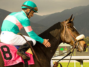 Zenyatta Fires Bullet at Hollywood