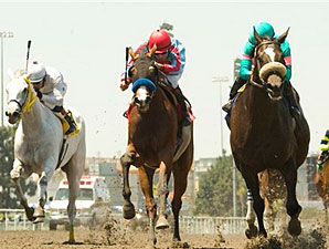 Zenyatta and Mike Smith, right, hold off Tough Tiz's Sis and Aaron Gryder, center, and Silver Swallow (David Flores), left, for victory in the Vanity Handicap.