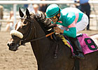 Zenyatta Could Run in San Margarita Handicap