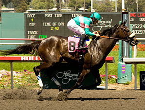 Zenyatta wins the 2009 Vanity.
