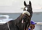 Zenyatta Breezes Six Furlongs in Vanity Prep