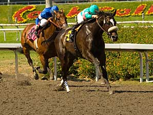 Zenyatta is again dominant, taking the Milady (gr. I).