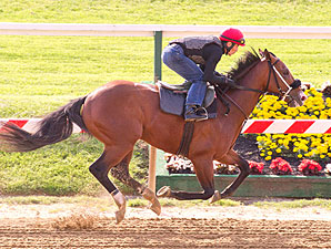Zetterholm - Pimlico May 13, 2012.