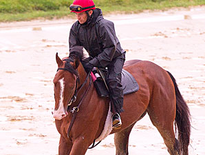Zetterholm - Pimlico May 15, 2012.