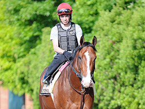 Zetterholm - Pimlico May 17, 2012.