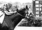 Hill Prince: Meadow Stable's First Star