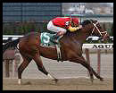 Affirmed Success Wins Toboggan by Two Lengths