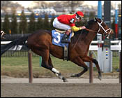 Affirmed Success Back to Work at Aqueduct